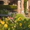 Relaxing backgarden for summer days
