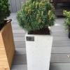donice-z-betonu-architetonicznego-donice-betonowe-taras-balkon-3-jpg