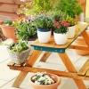 Rośliny na tarasie