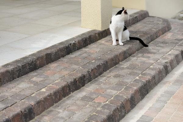 Schody na taras z kostki brukowej - brukowane schody tarasowe