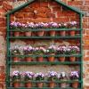 dekoracja-kwiaty-na-taras-jpg