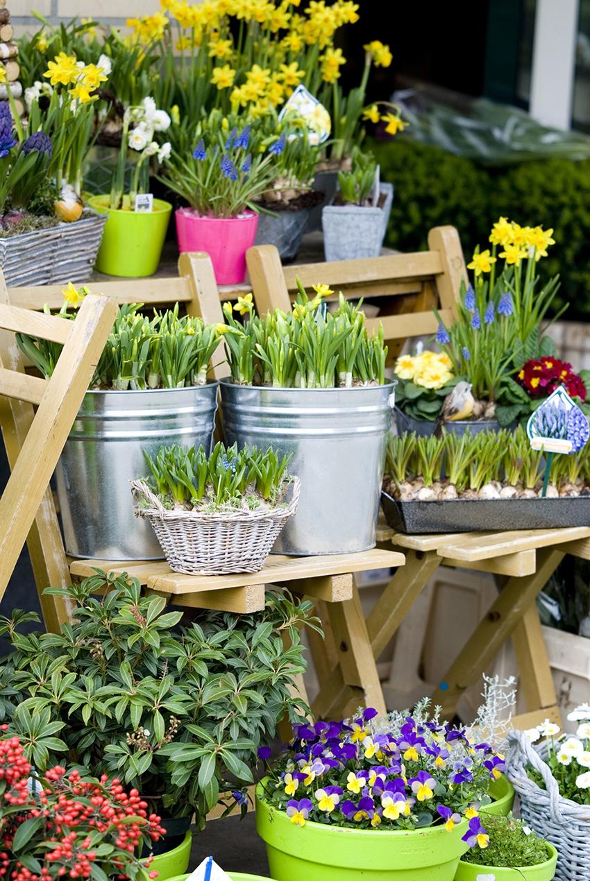 flowershop in springtime