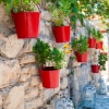 Pomysł na_balkon i taras - zielona ściana