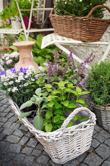 Pomys na ma y taras taras w roli kwietnika warzywnika i for Herb garden ideas for small spaces