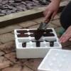 Pojemniki na rozsady z polistyrenu - Ogrodowe Innowacje