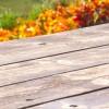 Olejowanie tarasu jesienią