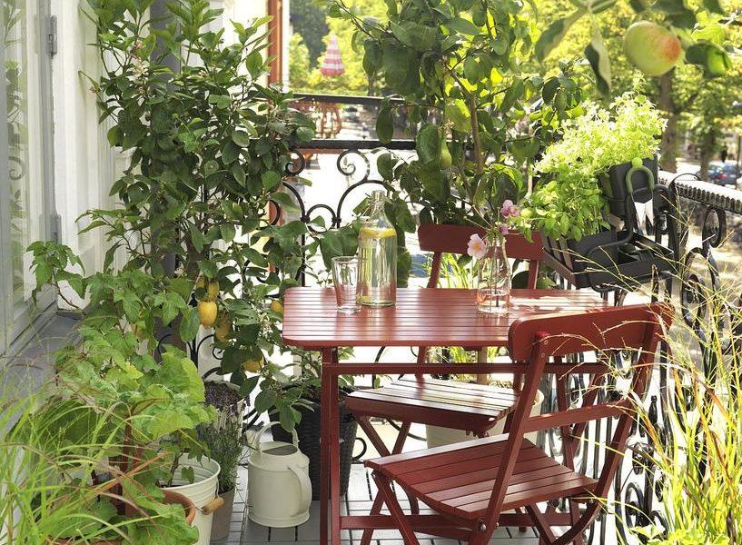 ogrod-na-balkonie