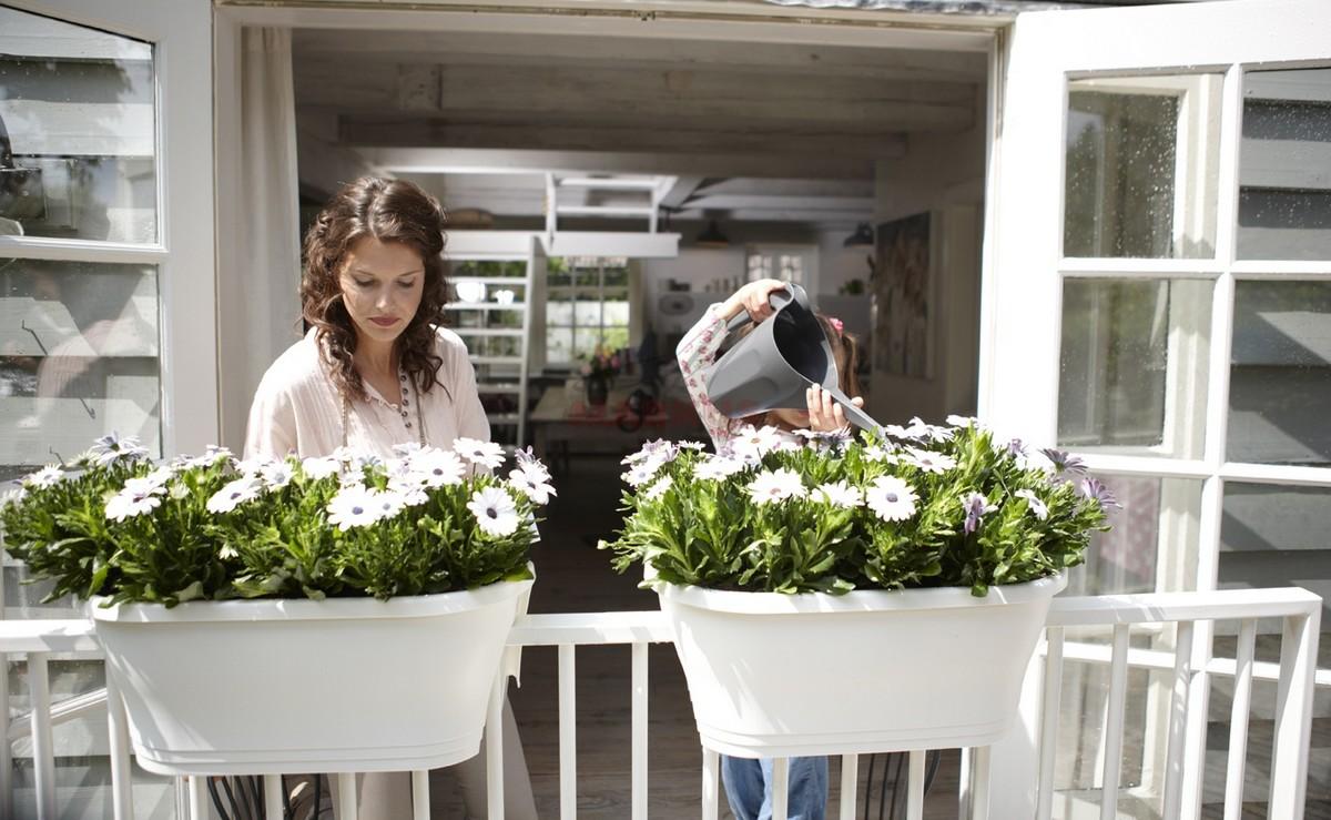 5 Pomyslow Na Maly Balkon Kwiaty Na Balkonie Taras Balkon